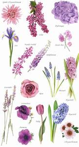 Flower names by Color | Hayley's Wedding Tips 101