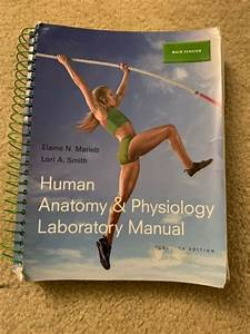 Human Anatomy And Physiology Labratory Manual 11th Edition