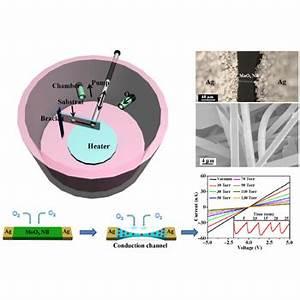 Design and construction of ultra-thin MoSe 2 nanosheet ...