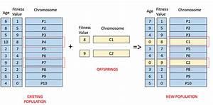 Genetic Algorithms Survivor Selection
