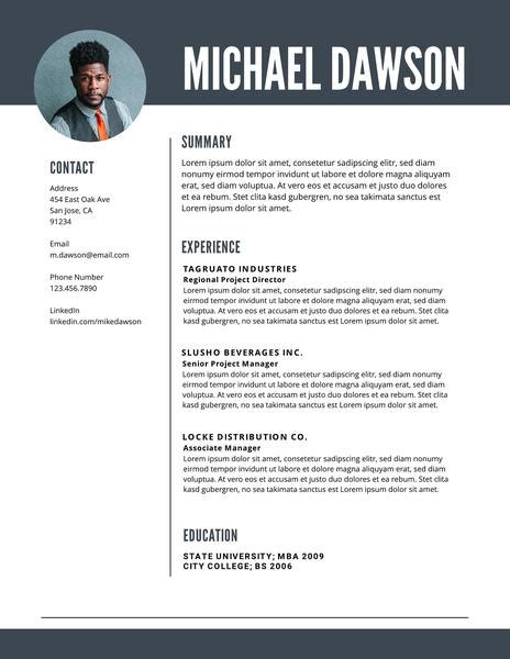 Resume Template With Picture by Free Professional Resume Templates Downloadable Lucidpress