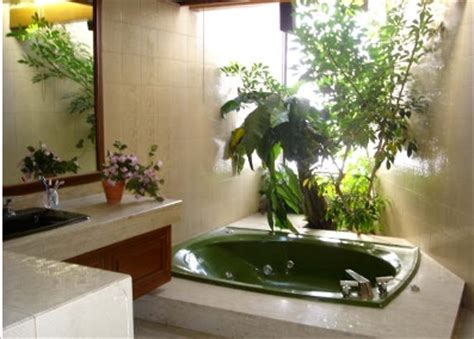 artificial plants for the bathroom comprar plantas y 225 rboles ornamentales