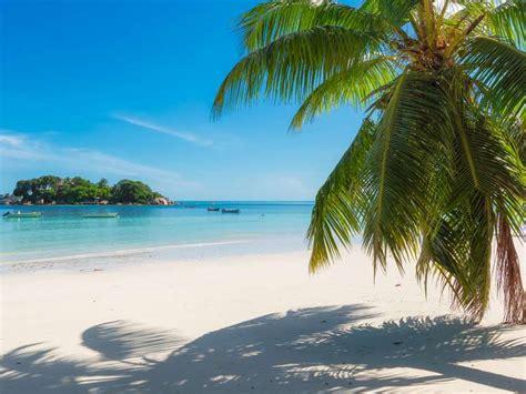 Kreuzfahrten nach Jamaika: Preise, Angebote und Aktionen ...