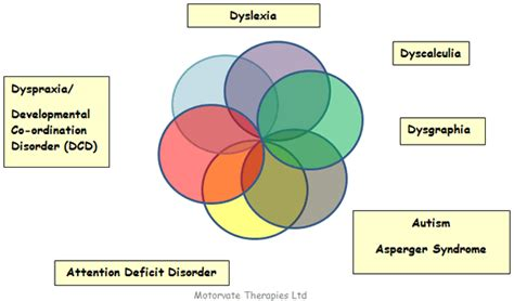 Attention Deficit Disorder  Pictures, Posters, News And