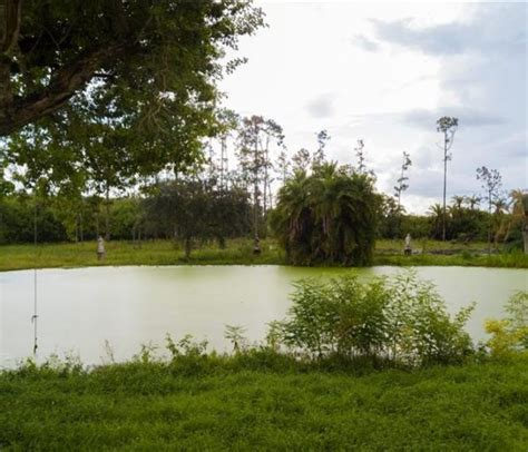 large  acre ranch florida ultimate land listings