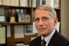 WH turns on Fauci