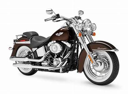 Davidson Harley Softail Deluxe Motorcycle Flstn Motorcycles