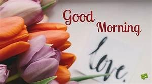 Images Of Morning Love - impremedia.net