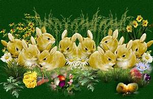 Schöne Ostertage Bilder : w nsche allen ein frohes osterfest blog kunterbund von g b ~ Orissabook.com Haus und Dekorationen