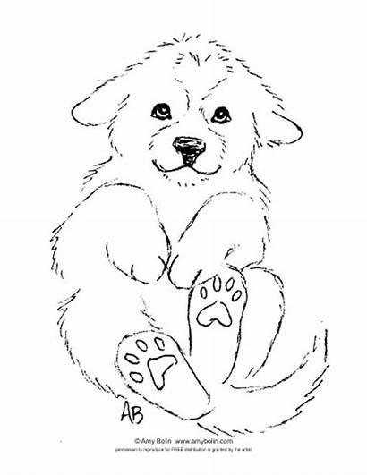 Puppy Coloring Pyrenees Sheet Puppies Bolin Amy