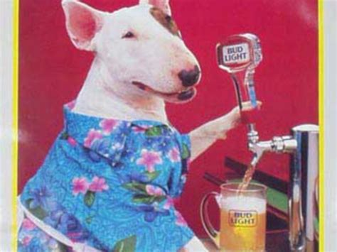 Bud Light Shirts by Bud Light Spuds Mackenzie Super Bowl Ad Business Insider
