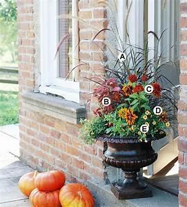 Balkonbepflanzung Im Herbst : gartenpflege im herbst n tzliche tipps f r die g rtner balkonbepflanzung pinterest ~ Markanthonyermac.com Haus und Dekorationen