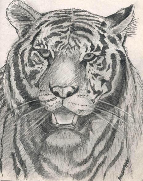 walking tiger  dontspellmyname  newgrounds