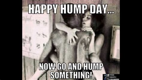 Dirty Hump Day Memes - hump day meme happy hump day now go and picsmine