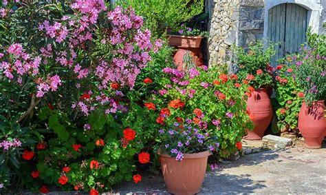 Anspruchslose Garten Pflanzen by Der Mediterrane Garten Pflanzenparadies Weinheim De