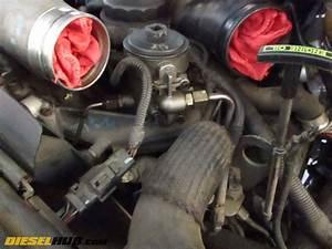 Fuel Filter 6 0 Diesal