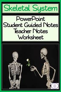 Skeletal System  Powerpoint  Guided Student Notes