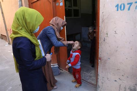 Afghan officials: 3 women working in polio drive killed ...