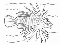 HD Wallpapers Lionfish Coloring Pages