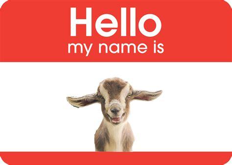 goat names fainting goat names goats unlimited