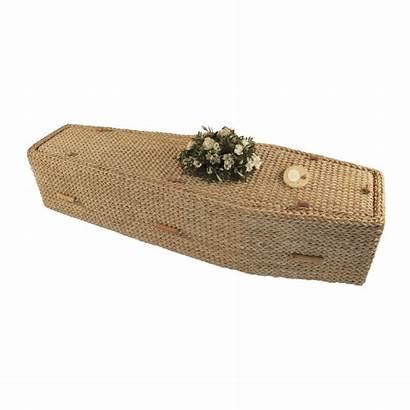 Coffins Banana Coffin Leaf Traditional Caskets Press