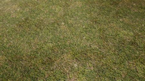 grass texture floor natural grass texture floor at skyrim nexus mods and community