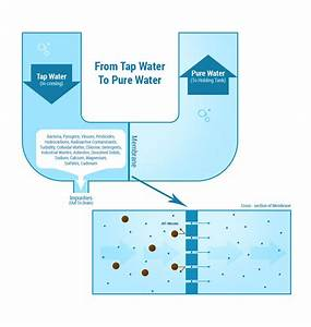How Reverse Osmosis Water Filter Systems Work And What Ro Systems Do  Learn More About Reverse