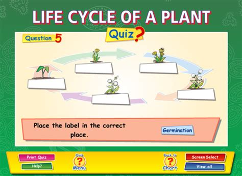 cycle of a plant worksheet ks2 cycle of a plant content classconnect