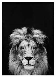 Tableau Lion Noir Et Blanc : toile lion 50 x 70 cm noir blanc ethnique chic ~ Dallasstarsshop.com Idées de Décoration