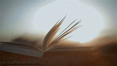 Animated Books Pages Gifs Wind Reading Funny