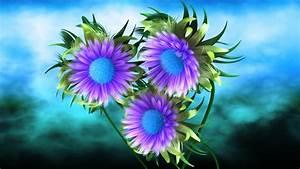 3d, Purple, Flower, Wallpaper