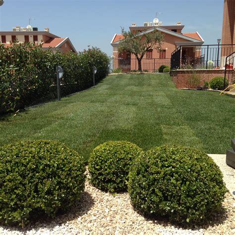 progetto giardino mediterraneo progetto un giardino mediterraneo moderno abito verde