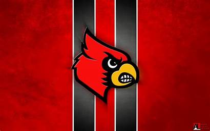 Louisville Cardinals Football University Desktop Wallpapers Cardinal