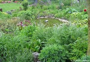 Gartenteich Richtig Anlegen : gartenteich anlegen teil 6 den gartenteich bepflanzen ~ Michelbontemps.com Haus und Dekorationen