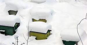 Warum Machen Bienen Honig : bienen im winter wissen rund um die bienen honig und bienen ~ Whattoseeinmadrid.com Haus und Dekorationen