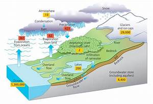 Diagram Of Hydrological Cycle