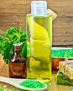 Beleuchtete Bilder Selber Machen : shampoo selber machen rezept brennnessel shampoo f r ~ Lizthompson.info Haus und Dekorationen