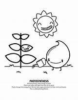 Coloring Pages Photosynthesis Energy Solar Record Drawing Brooklyn Bridge Sheets System Pdf Need Getcolorings Printable Science Dog Getdrawings Books Print sketch template
