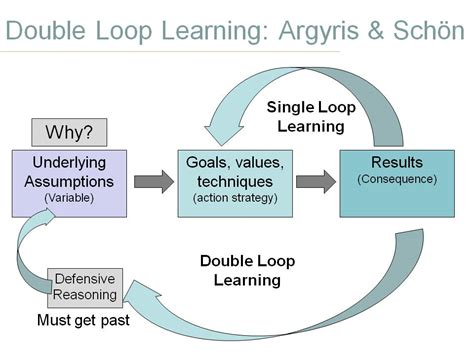 double loop learning  theories  action countingletters