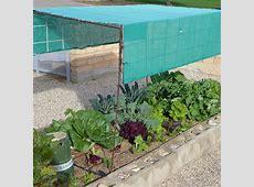 Shade Cloth For Raised Garden Beds Garden Designs