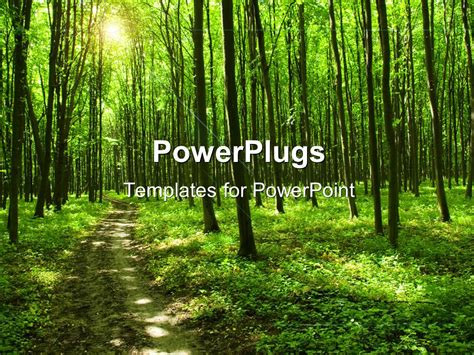template forest powerpoint template path in green forest with trees and sunlight 14952