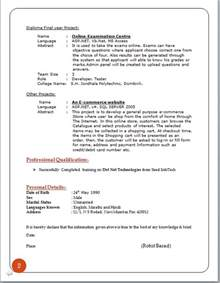 Curriculum Vitae In Html Format by Professional Curriculum Vitae Format