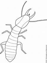 Termite Bug Embroidery Patterns Coloring Outline Insect Pages Insects Bugs Drawings Termites Drawing Pixels Pattern Printables Stencils Colouring Lightupyourbrain Printable sketch template