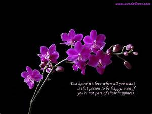 Beautiful Wallpapers with Beautiful Quotes | Free ...