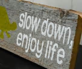 "Rustic Barnwood Wall Art Hand-Painted Wood Sign - Rustic Home Decor - Turtle Wall Art - ""Slow Down, Enjoy Life"""