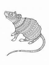 Coloring Pages Mouse Zentangle Adults Adult Printable Mycoloring sketch template