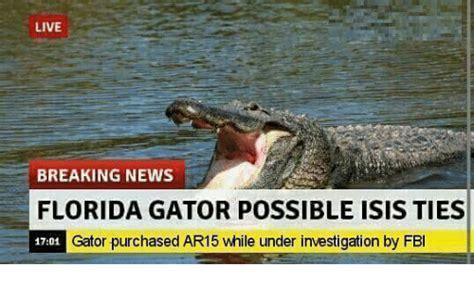 Funny Florida Gator Memes - 25 best memes about gator gator memes