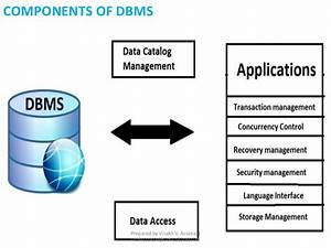 Slide 1 Introduction To Dbms