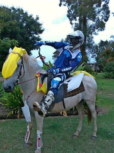 dirtbike  horse moto related motocross forums