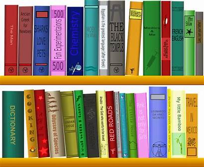 Shelf Library Books Reading Pixabay Graphic Vector